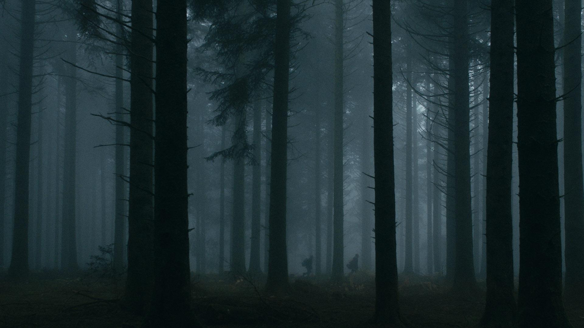 Metsa tume süda